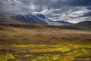 Islandsjakt 2012