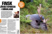 Finbesök från Finland
